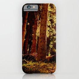 Woodland Sunrise iPhone Case