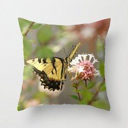 Swallowtail Sipping Nectar Throw Pillow