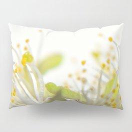 Abstract Filament Pillow Sham