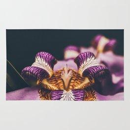 Beautiful Flower Rug