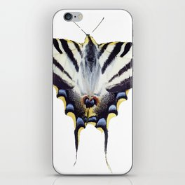 Scarce Swallowtail With Large Wingspan Vector iPhone Skin