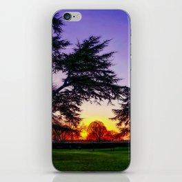 Sunset landscape iPhone Skin