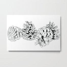 White Pine Cones Metal Print