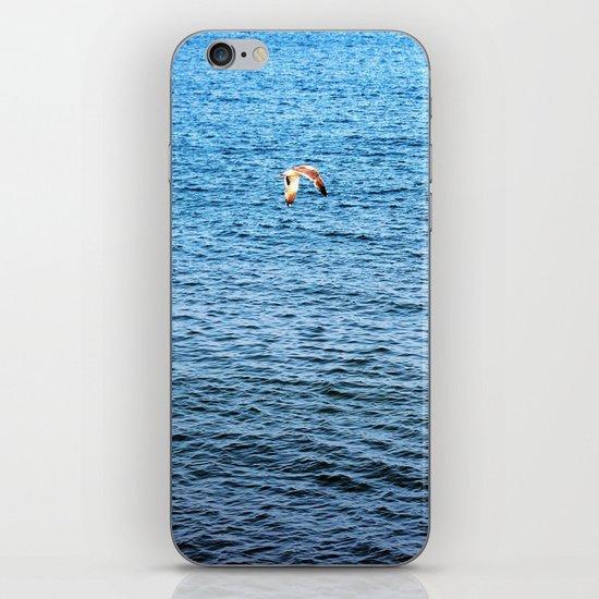 Gliding iPhone & iPod Skin