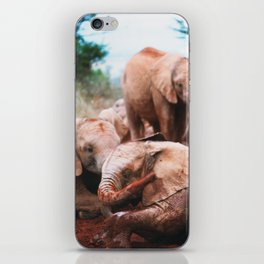 Baby elephants iPhone Skin