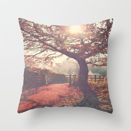 Sunlight shines through silhouetted tree. Throw Pillow