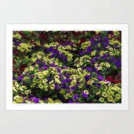 Waves of Petunias Art Print