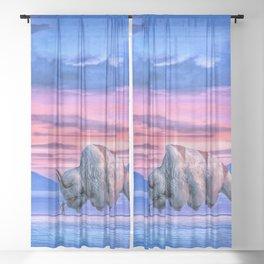 The Last Airbender  Sheer Curtain