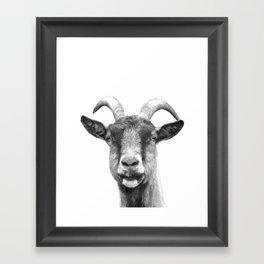 Black and White Goat Framed Art Print