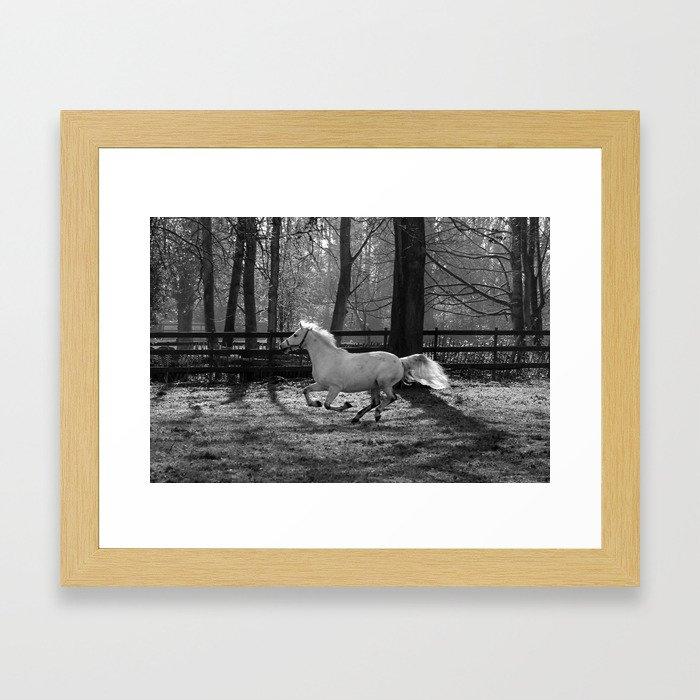 Majestic Horse Framed Art Print
