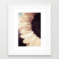 sunflower Framed Art Prints featuring Sunflower by Anne Staub