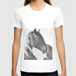 Stallion in black and white T-shirt