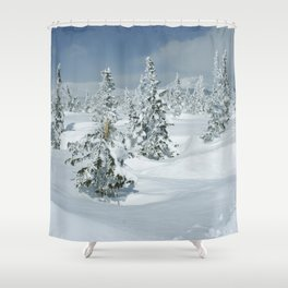 Winter day 24 Shower Curtain