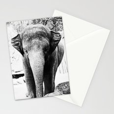 Dangerously Delicate Stationery Cards