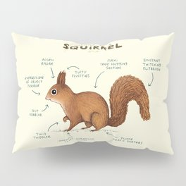Anatomy of a Squirrel Pillow Sham