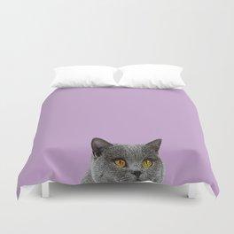 Lavender Home Decor Lilac Decoration British Short haired Cat Bag Pastel Colors Duvet Cover