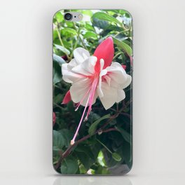Pretty Flower in Butchart's Garden iPhone Skin