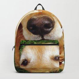 Who's a Good Boy? Backpack