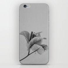 Forgotten No. 1 iPhone & iPod Skin