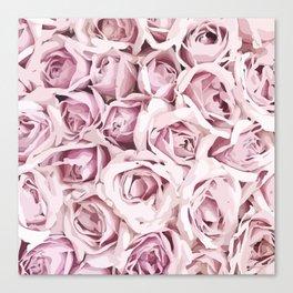 Blush Roses Canvas Print