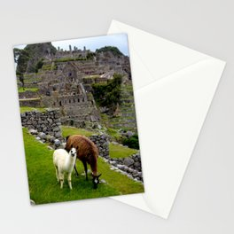 The Inhabitants of Machu Picchu Stationery Cards