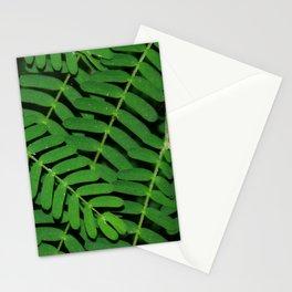 Green Ferns Stationery Cards