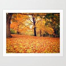 Autumn Leaves - Central Park - New York City Art Print