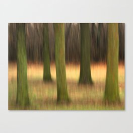 Five of Trees Canvas Print