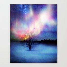 Aurora Boreal Canvas Print