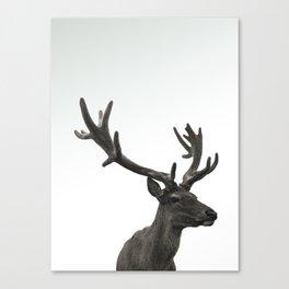 Single Deer Canvas Print