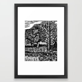 Cabbage Palm at the Oasis Framed Art Print