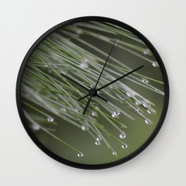Raindrops on Pine Tree Macro Nature Photography - Anticipation Wall Clock