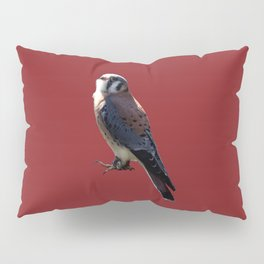 Life's a Zoo - in Kestrel Pillow Sham
