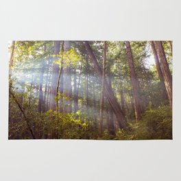 Light Through the Trees Rug