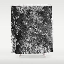 Forgotten '6' Shower Curtain