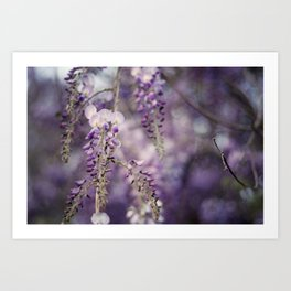 Aubergine Bliss Art Print