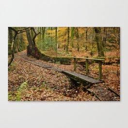Roddlesworth Wood in the Autum Canvas Print