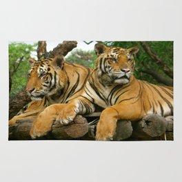 hai der tiger Rug