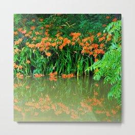 Wild Orange Tiger Daylilies at the Lake Metal Print