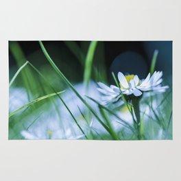 Cold Flower Rug