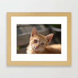 You Have Nothing To Do? Framed Art Print