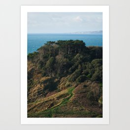 The Trees on the Clifftop Art Print
