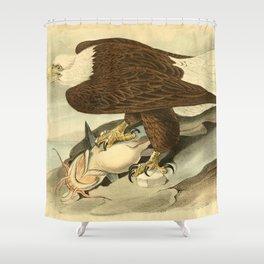 Bald Eagle (Haliaeetus leucocephalus) Shower Curtain