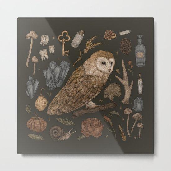 Harvest Owl Metal Print