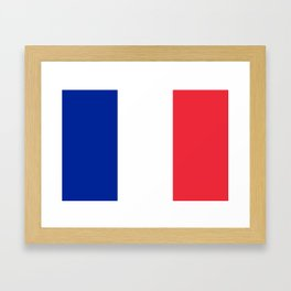 Flag of France, Authentic color & scale Framed Art Print