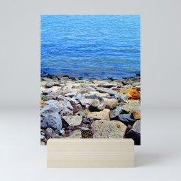 Tranquility Mini Art Print