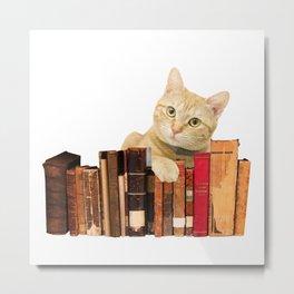 old Books yellow Tiger cat  Metal Print