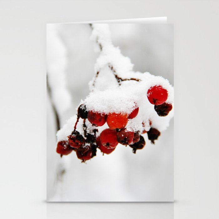 Bunch of red berries in winter Stationery Cards