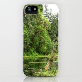 Hoh Rainforest Scene iPhone Case