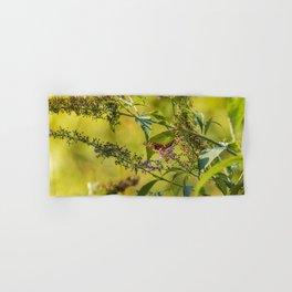 Great Spangled Fritillary on a Butterfly Bush Hand & Bath Towel